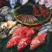обсуждение разработки стандартов для «рыбного» техрегламента