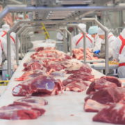 еаэс производство говядины